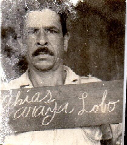 Araya Lobo